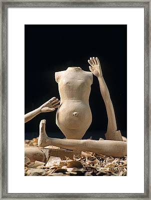 Pieces Of Wood Puppet Framed Print