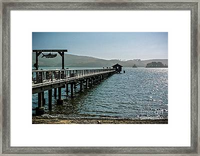 Pier At Nick's Cove Framed Print