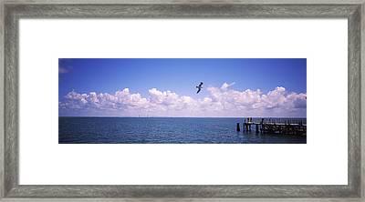 Pier Over The Sea, Fort De Soto Park Framed Print