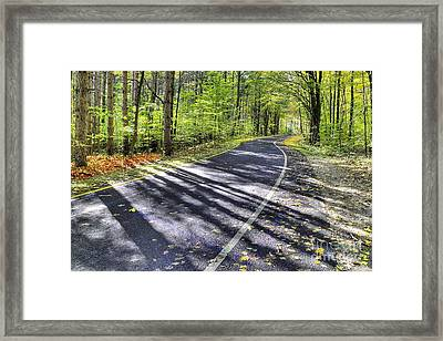 Pierce Stocking Scenic Drive Framed Print