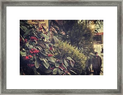 Pierre Loti Framed Print by Taylan Apukovska