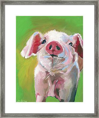 Pig Framed Print by Anne Seay