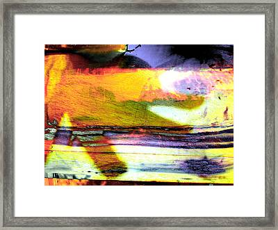 Pig Chasing Fish Framed Print by Robert M Cooper