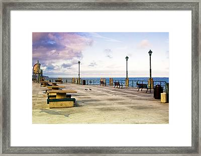 Pigeon Meeting At Redondo Pier Framed Print