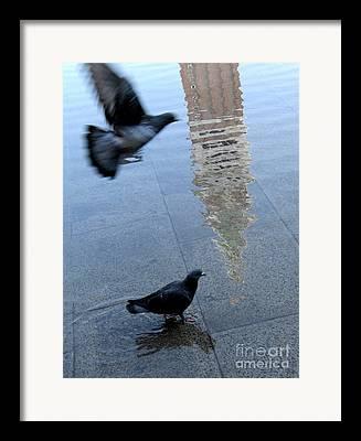 Acqua Alta Framed Prints