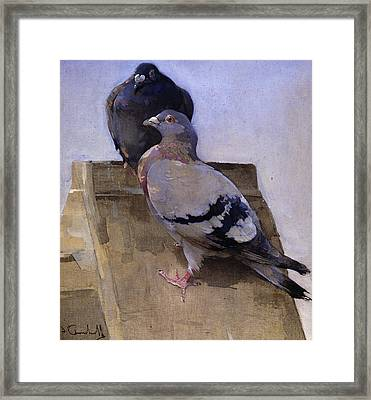 Pigeons On The Roof Framed Print by Joseph Crawhall