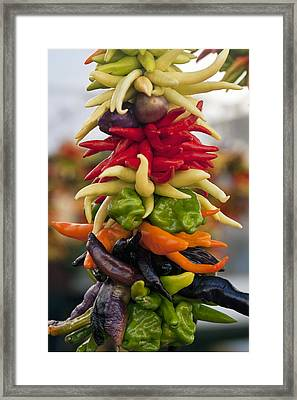 Pike Place Market Chilies Framed Print by Karma Boyer