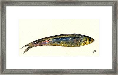 Pilchard Framed Print by Juan  Bosco