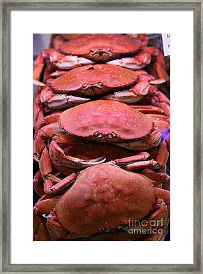 Pile Of Fresh San Francisco Dungeness Crabs - 5d20693 Framed Print