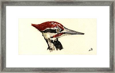 Pileated Woodpecker Head Study Framed Print by Juan  Bosco