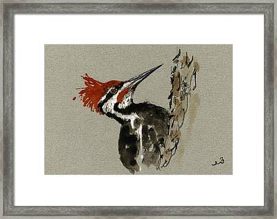 Pileated Woodpecker Framed Print by Juan  Bosco