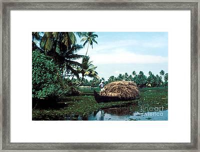 Piled High Framed Print by Eva Kato