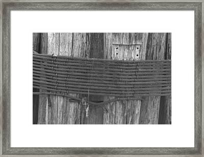 Pilings Framed Print by Bill Mock