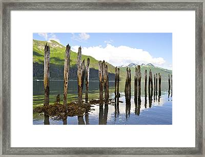 Framed Print featuring the photograph Pilings by Cathy Mahnke