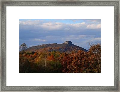 Pilot From Perch Road Framed Print
