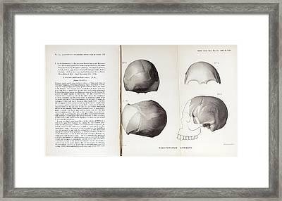 Piltdown Man Skull And Paper Framed Print