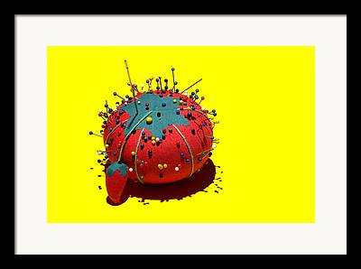 Pincushion Framed Prints