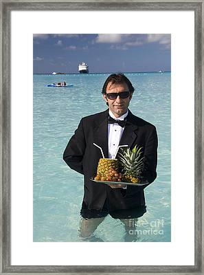 Pina Colada Anyone Framed Print