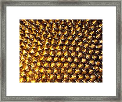 Pincushion Framed Print by Justin Woodhouse