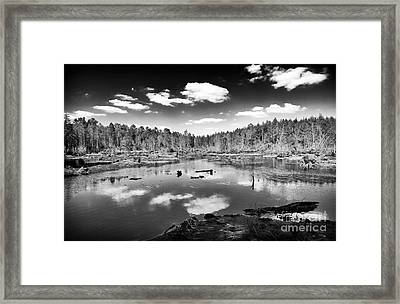 Pine Barrens Lake Framed Print by John Rizzuto