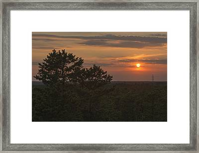 Pine Barrens Sunset Nj Framed Print by Terry DeLuco