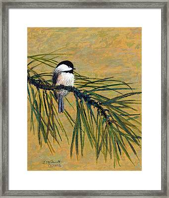 Framed Print featuring the painting Pine Branch Chickadee Bird 1 by Kathleen McDermott