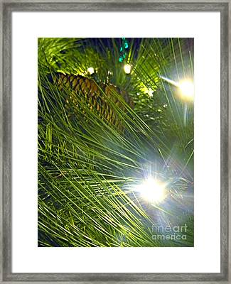 Framed Print featuring the photograph Pine Cone With Lights by Utopia Concepts