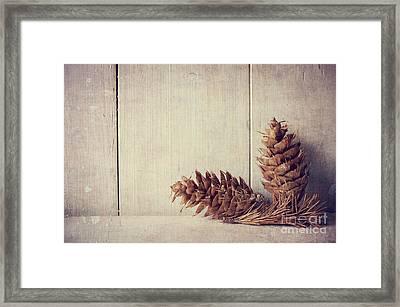 Pine Cones Framed Print by Jelena Jovanovic