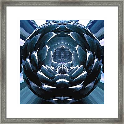Pine Flower Framed Print by Josephine Ring
