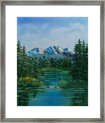 Pine Lake Framed Print by Chris Fraser