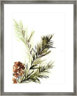 Pine Leaves Framed Print by Sophia Rodionov