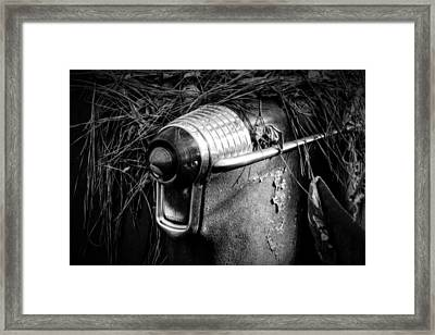 Pine Needles On Tail Light In Black And White Framed Print by Greg Mimbs