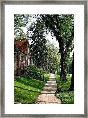 Pine Road Framed Print