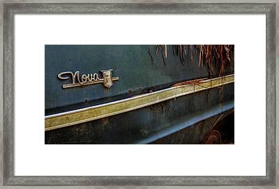 Pine Straw Nova Framed Print by Greg Mimbs