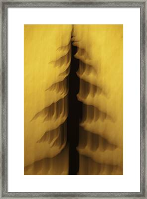 Framed Print featuring the photograph Pine Tree Abstract 2 by Sherri Meyer