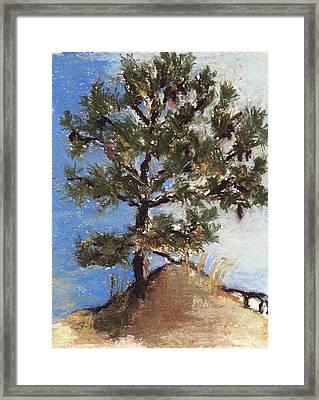 Pine Tree Framed Print by Cristel Mol-Dellepoort