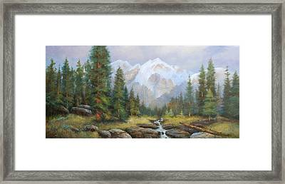 Pine Valley Framed Print by Richard Hinger