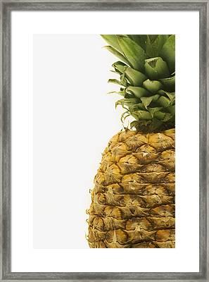 Pineapple Framed Print by Darren Greenwood