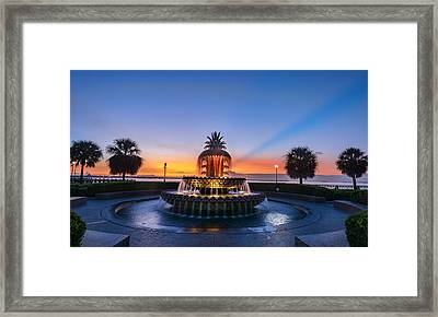 Framed Print featuring the photograph Pineapple Dawn by RC Pics
