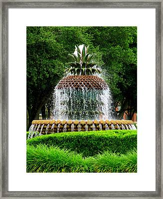 Pineapple Fountain 2 Framed Print by Randall Weidner