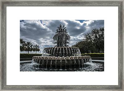 Pineapple Fountain Closeup Framed Print by Steven  Taylor