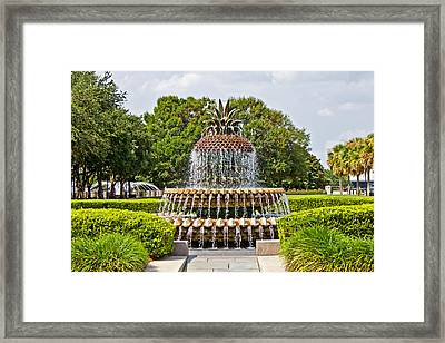 Pineapple Fountain In Waterfront Park Framed Print