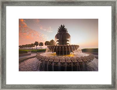 Pineapple Fountain Framed Print by Serge Skiba