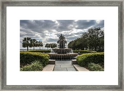 Pineapple Fountain Framed Print by Steven  Taylor