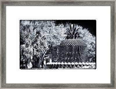 Pineapple In Charleston Framed Print by John Rizzuto