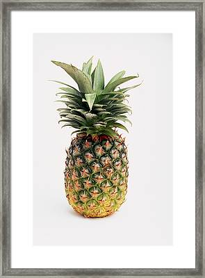 Pineapple Framed Print by Ron Nickel