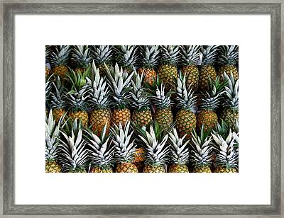 Pineapples  Framed Print