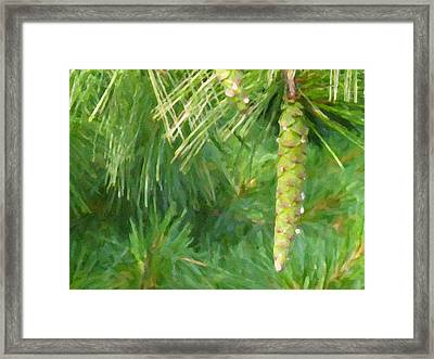 Pinecone - Digital Painting Effect Framed Print by Rhonda Barrett