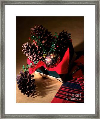 Pinecones Christmasbox Framed Print by Iris Richardson
