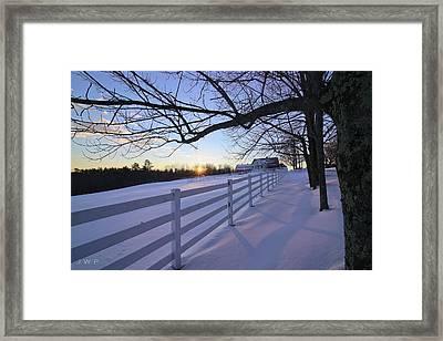 Pineland Sunrise Framed Print by Jonathan Woodbury